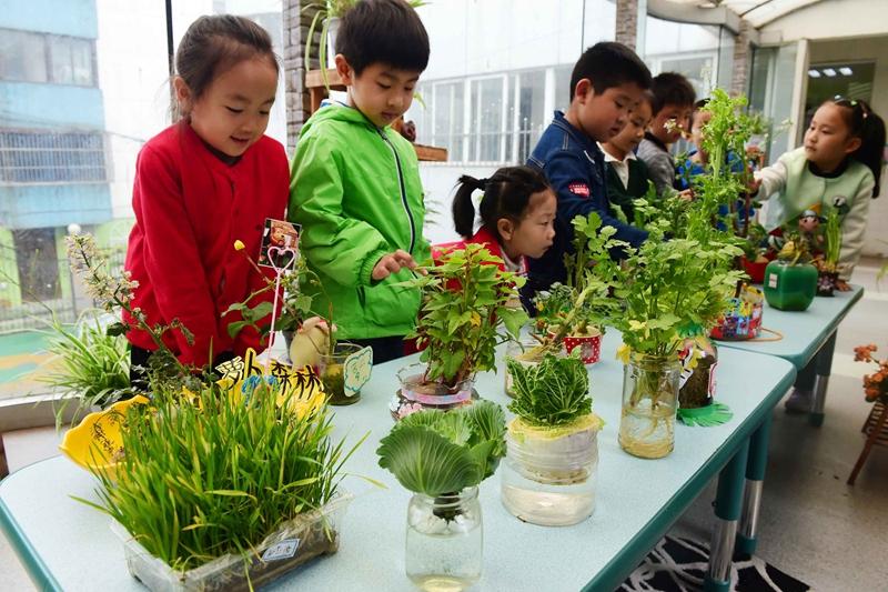 4月26日,镇江京河路幼儿园的孩子们在观看水培植物创意作品.